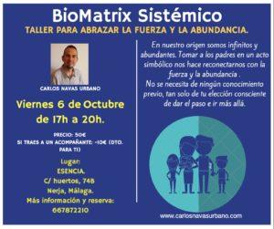 Taller presencial de BioMatrix Sistémico. Abrazar la fuerza y la abundancia. @ Centro Esencia. | Nerja | Andalucía | España