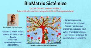 Trascendiendo memorias atrapadas del árbol Transgeneracional con BioMatrix Sistémico. @ ONLINE
