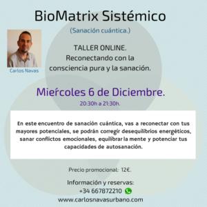 ONLINE: Taller grupal de Sanación cuántica con BioMatrix Sistémico. @ ONLINE