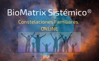 Constelaciones familiares On-Line con BioMatrix Sistémico.